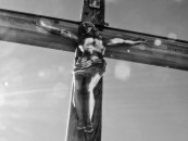 ¡Proclamar, celebrar, vivir, ser Cristo!