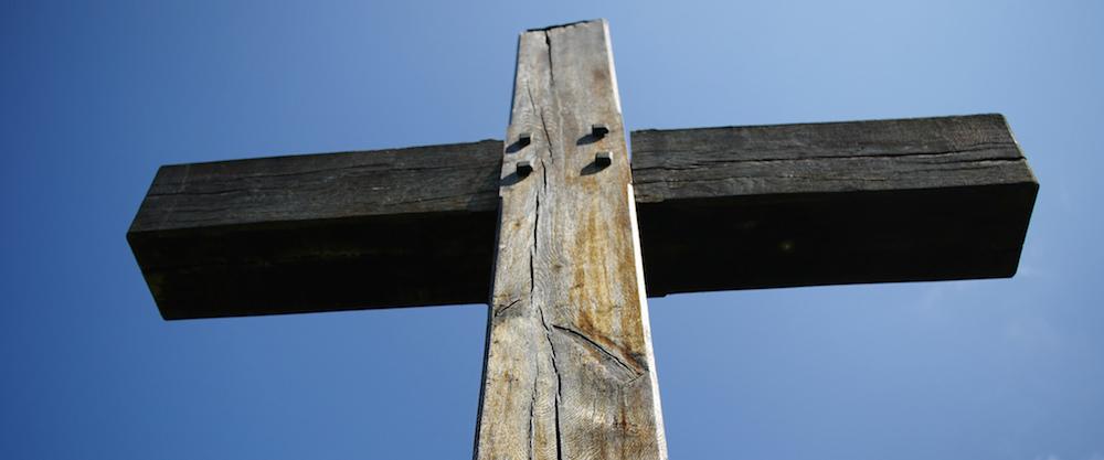 El árbol.  Testigo de la Pasión